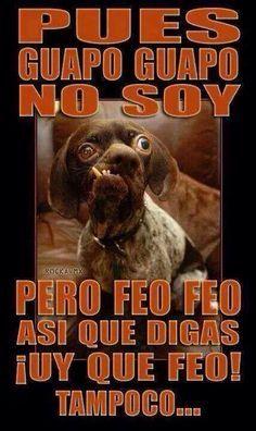 feo perro meme.jpg